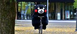 일본의 자전거 법규